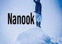 How To Install Nanook Kodi Addon