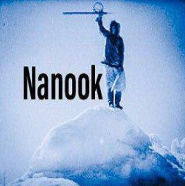How To Install Nanook Kodi Addon