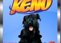How To Install Keno Kodi Addon