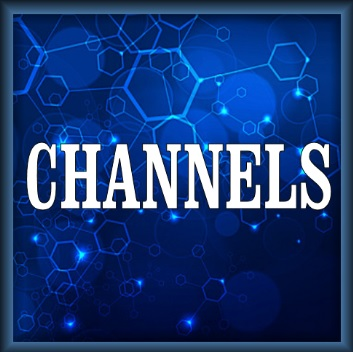 How To Install Channels Kodi Addon