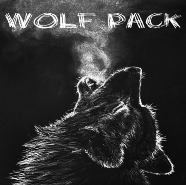 How to Install Wolf Pack Kodi Addon New Repo URL