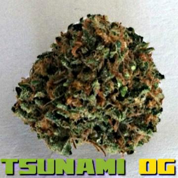 How To Install Tsunami OG Kodi Addon Updated