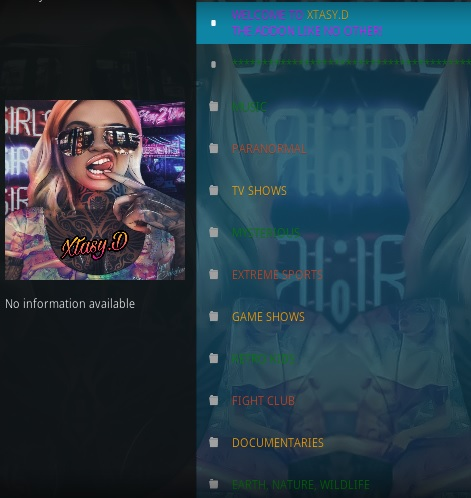 How To Install XTASY D Kodi Addon Overview