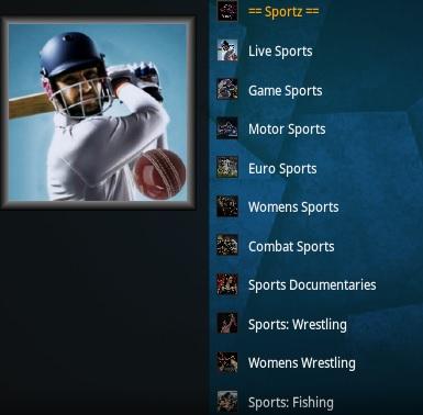 How To Install Sportz Kodi Addon Overview 2020