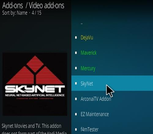 How To Install SkyNet 2020 Kodi Addon Step 17