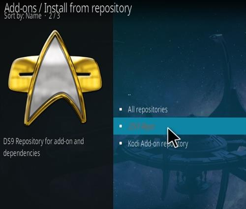 How To Install DS9 Kodi 2021 Addon Step 15
