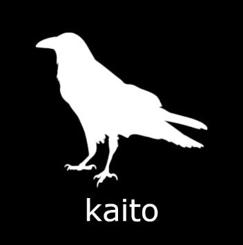 How To Install Kaito Kodi Addon