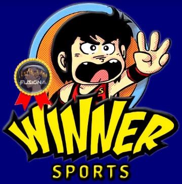How To Install Winner Kodi Sports Add-on
